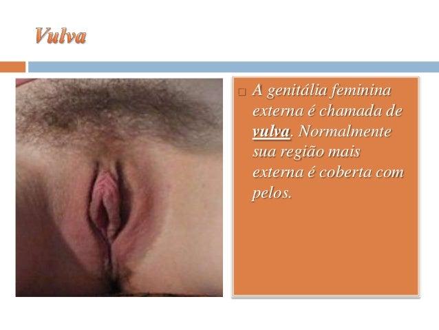 Se é possível aumentar o comprimento de pênis
