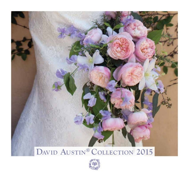 David Austin® Collection 2015 ® 1 5