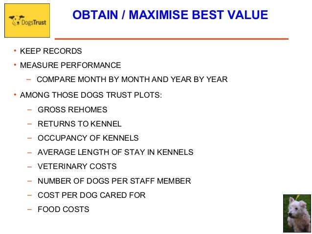Average Cost Of Dog Food Per Month