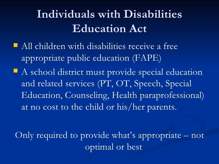 Children with disabilities research paper