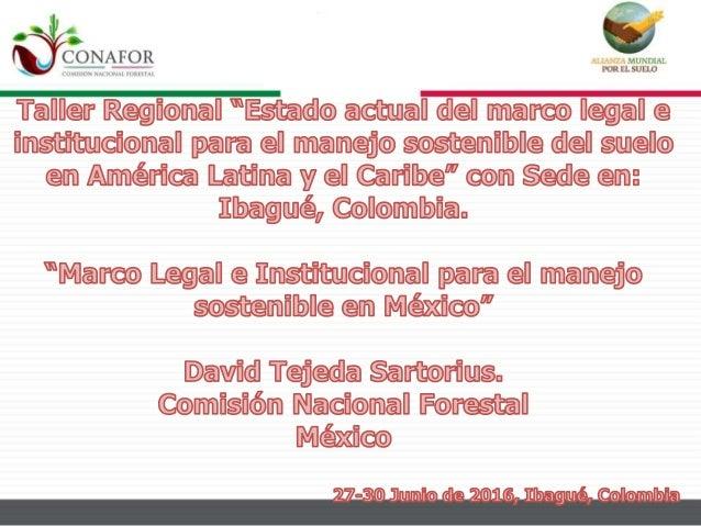 Contenido • Diagnóstico • Legislación e Instituciones del Sector Ambiental • Otras Leyes • Normas Mexicanas • Acciones Rea...