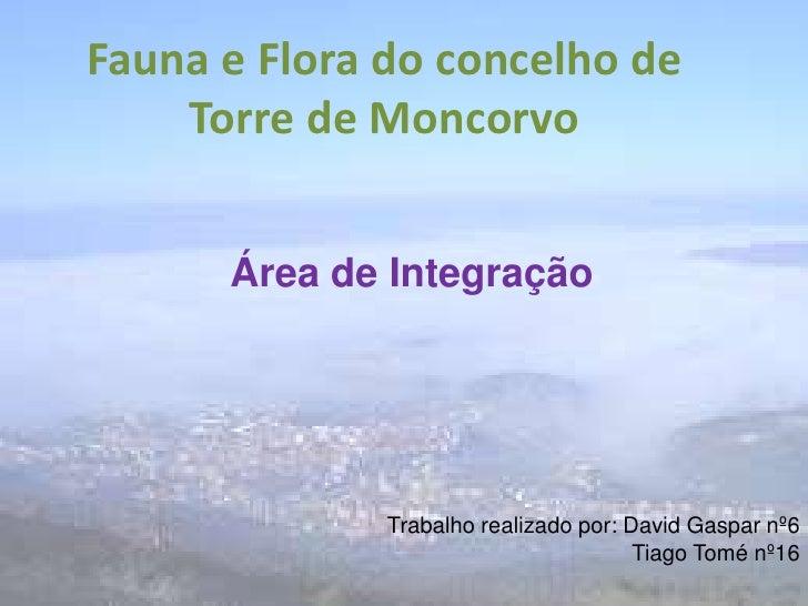 Fauna e Flora do concelho de Torre de Moncorvo<br />Área de Integração  <br />Trabalho realizado por: David Gaspar nº6<br ...