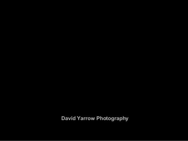 David Yarrow Photography