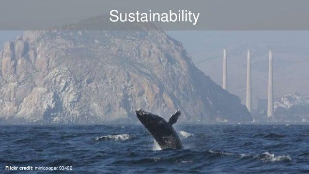 Sustainability  Flickr credit: minicooper 93402