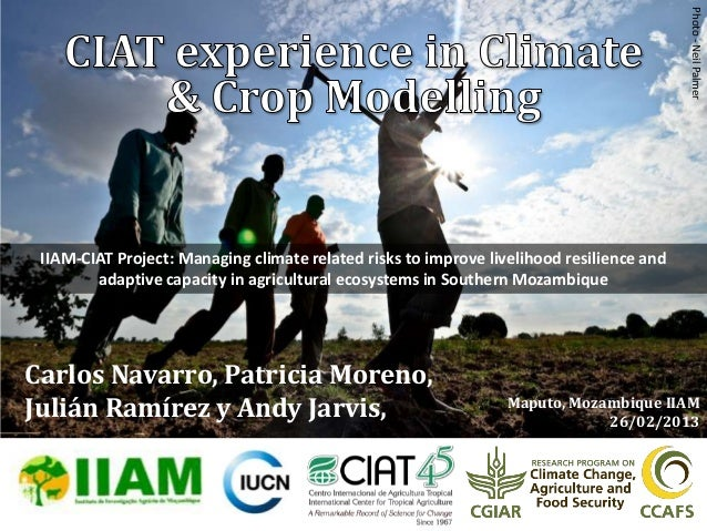 Photo - Neil Palmer IIAM-CIAT Project: Managing climate related risks to improve livelihood resilience and        adaptive...