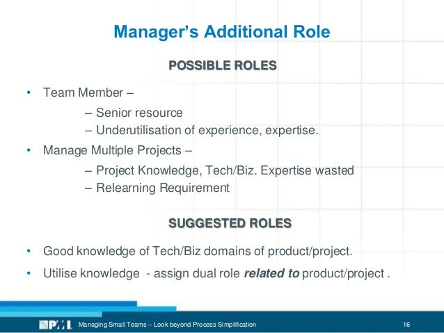 16 Manager's Additional Role POSSIBLE ROLES • Team Member – – Senior resource – Underutilisation of experience, expertise....