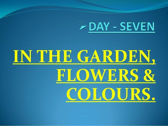 IN THE GARDEN, FLOWERS & COLOURS.