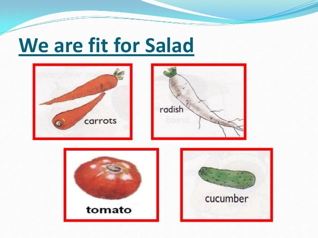 We are fit for Salad