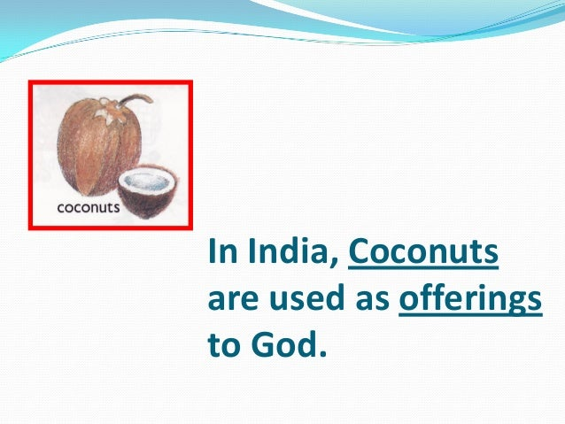 In India, Coconuts are used as offerings to God.