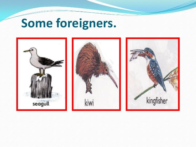 Some foreigners.