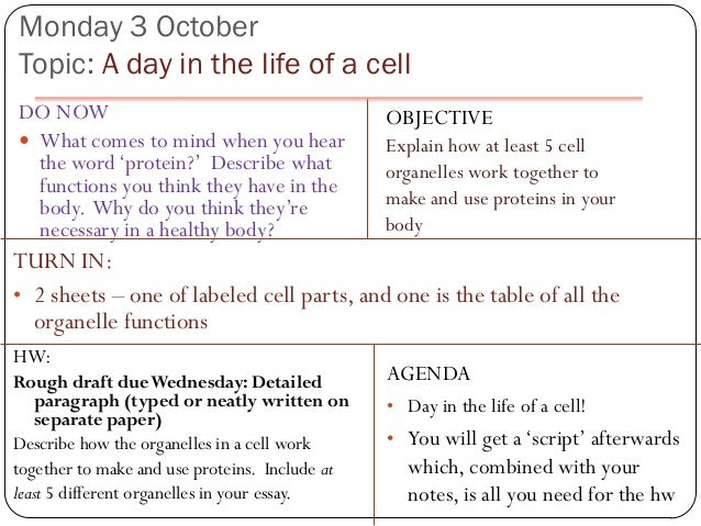 Monday 3 OctoberTopic: A day in the life of a cellDO NOW                                          OBJECTIVE What comes to...