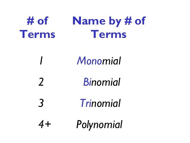 polynomial notes day  2