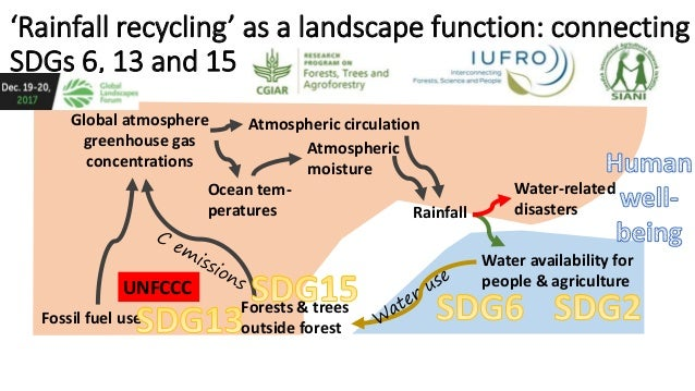 'Rainfall recycling' as a landscape function: connecting SDGs 6, 13 and 15 Global atmosphere greenhouse gas concentrations...