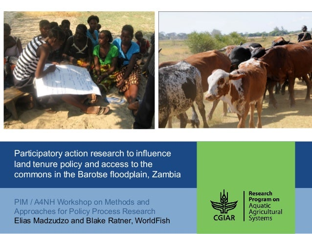 Participatory action research to influence land tenure policy and access to the commons in the Barotse floodplain, Zambia ...