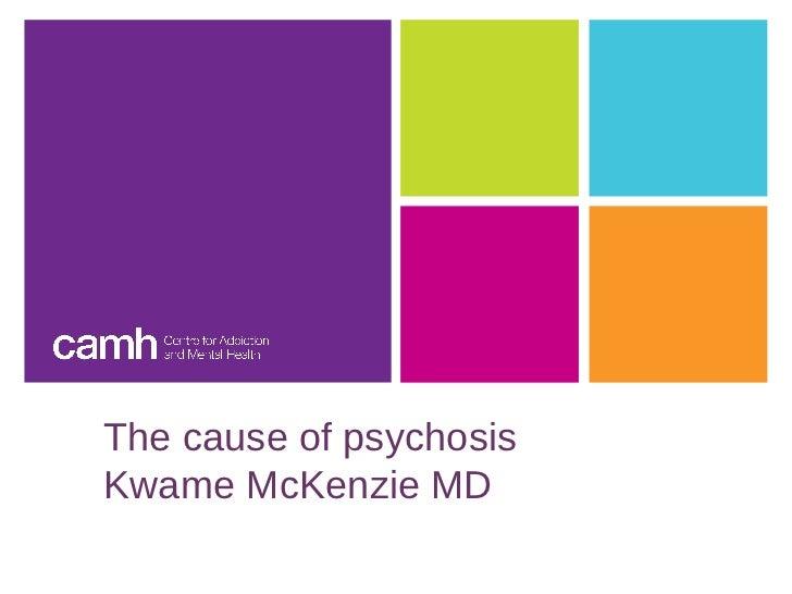 The cause of psychosisKwame McKenzie MD