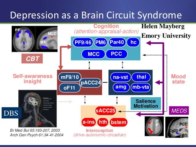 Networked Psychiatric Treatments  23  Protective LOF mutations, Pathway targets, epigenetics  Cell replacement Rx, Plastic...