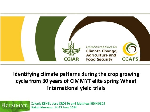 Identifying climate patterns during the crop growing cycle from 30 years of CIMMYT elite spring Wheat international yield ...