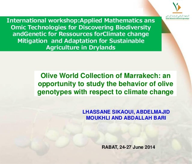 Olive World Collection of Marrakech: an opportunity to study the behavior of olive genotypes with respect to climate chang...
