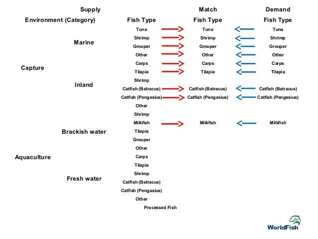 Day 3.2 fish indonesia asia fish 2015 rome Slide 3
