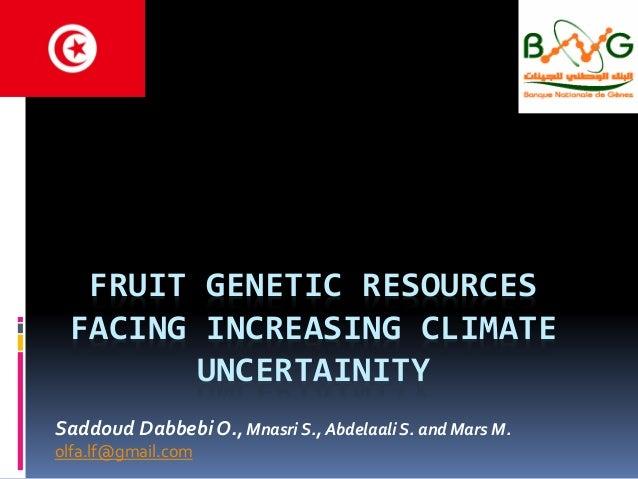 FRUIT GENETIC RESOURCES FACING INCREASING CLIMATE UNCERTAINITY Saddoud Dabbebi O., Mnasri S., Abdelaali S. and Mars M. olf...