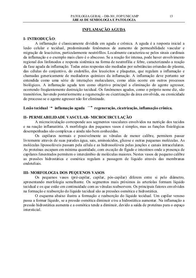 PATOLOGIA GERAL - DB-301, FOP/UNICAMP                         13                              ÁREAS DE SEMIOLOGIA E PATOLO...