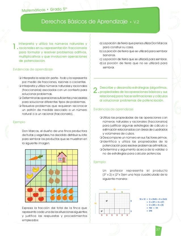 DBA derechos básicos de aprendizaje matemáticas