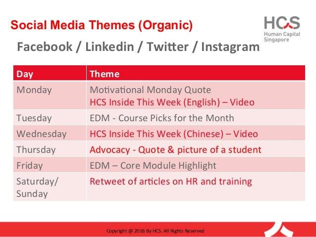 social media themes