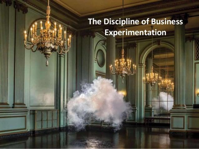 the discipline of business experimentation pdf