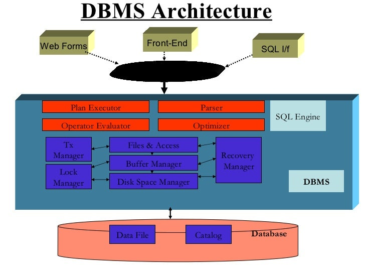 Dbms models dbms architecture thecheapjerseys Image collections