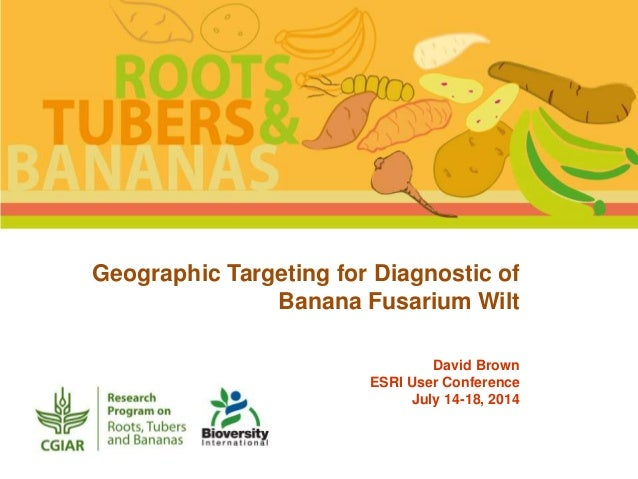 Geographic Targeting for Diagnostic of Banana Fusarium Wilt David Brown ESRI User Conference July 14-18, 2014