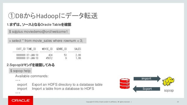 Copyright © 2016, Oracle and/or its affiliates. All rights reserved.   ①DBからHadoopにデータ転送 23 1.まずは、ソースとなるOracle Tableを確認 $ ...