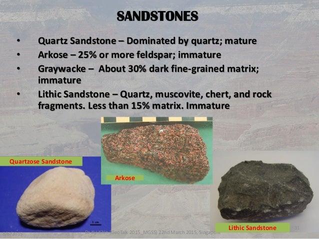 Understanding The Sedimentary Rocks