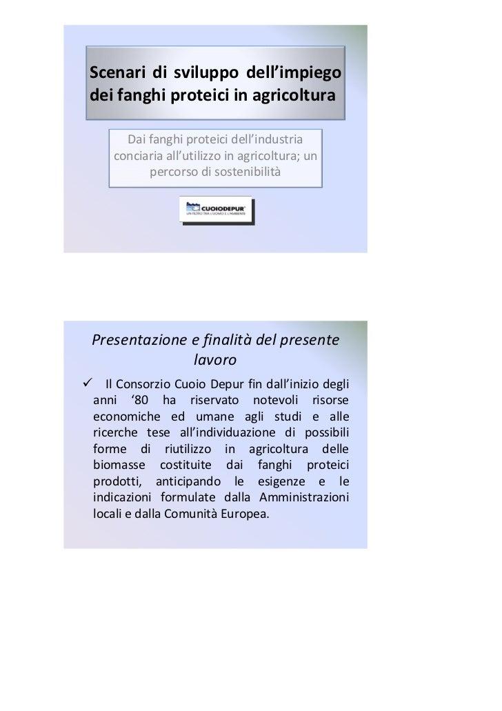 Scenari di sviluppo dell'impiegodei fanghi proteici in agricoltura     Dai fanghi proteici dell'industria   conciaria all'...