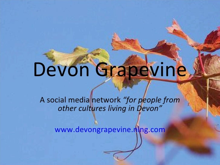 """Devon Grapevine A social media network  """"for people from other cultures living in Devon"""" www.devongrapevine.ning.com"""