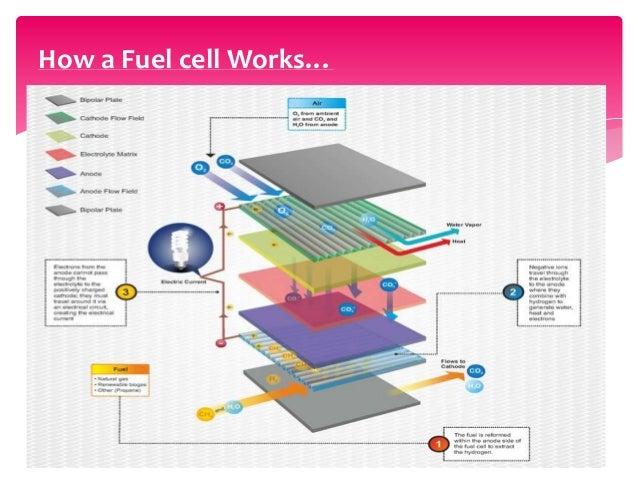 Direct Carbon Fuel Cells
