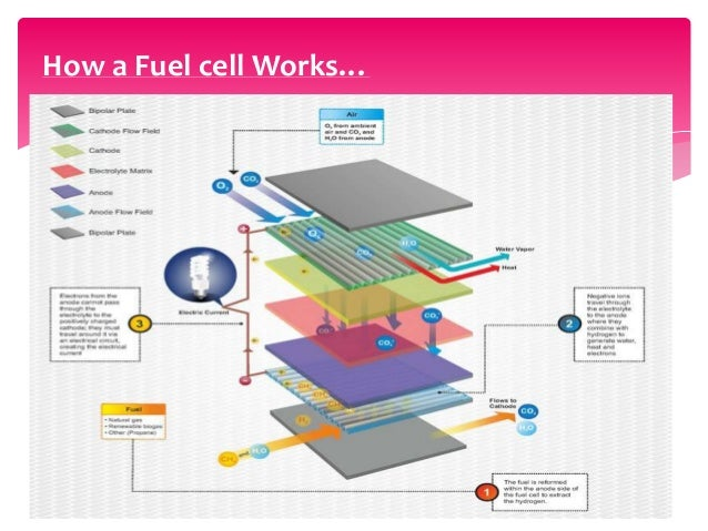 waste to energy by direct carbon fuel cells