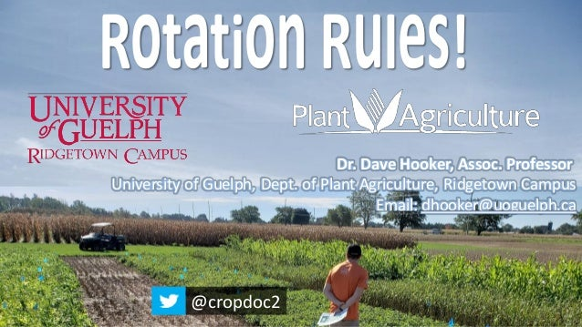 Dr. Dave Hooker, Assoc. Professor University of Guelph, Dept. of Plant Agriculture, Ridgetown Campus Email: dhooker@uoguel...