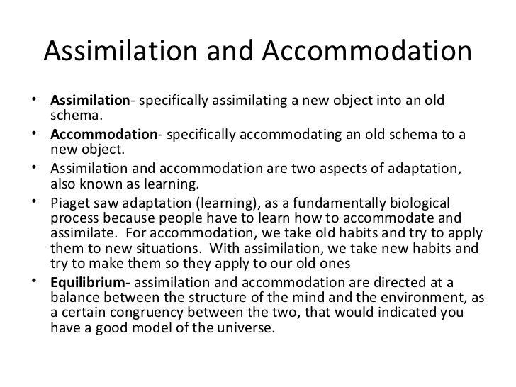 jean piaget assimilation