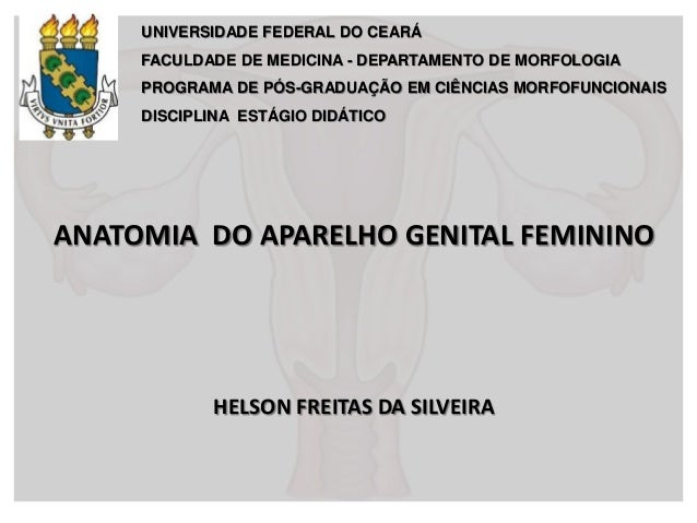 UNIVERSIDADE FEDERAL DO CEARÁ FACULDADE DE MEDICINA - DEPARTAMENTO DE MORFOLOGIA PROGRAMA DE PÓS-GRADUAÇÃO EM CIÊNCIAS MOR...