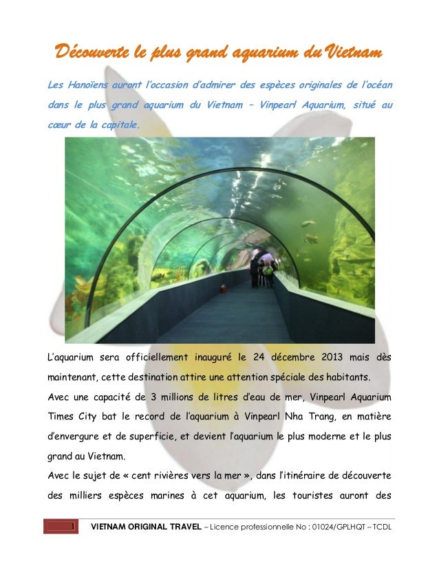 Découverte le plus grand aquarium du Vietnam Les Hanoïens auront l'occasion d'admirer des espèces originales de l'océan da...