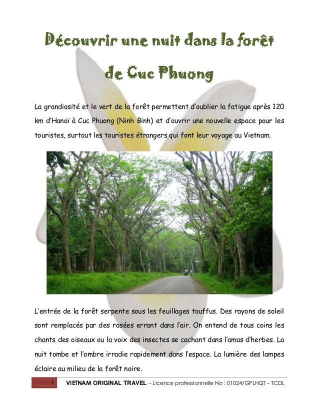 1 VIETNAM ORIGINAL TRAVEL – Licence professionnelle No : 01024/GPLHQT – TCDL Découvrir une nuit dans la forêt de Cuc Phuon...