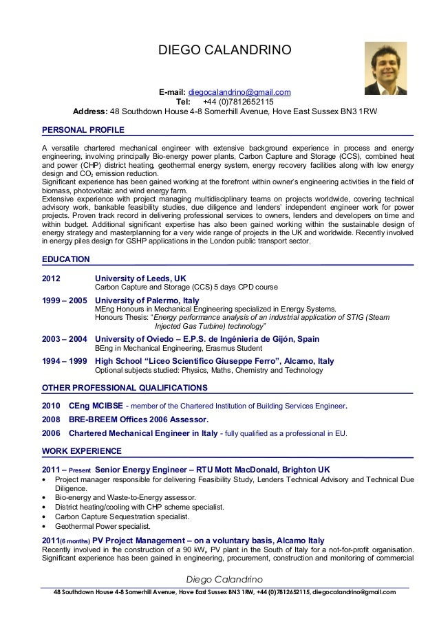cv of diego calandrino renewable energy consultant senior project - It Consultant Resume