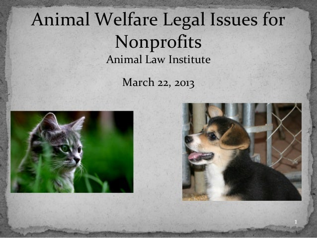 Animal Welfare Legal Issues for        Nonprofits         Animal Law Institute            March 22, 2013                  ...