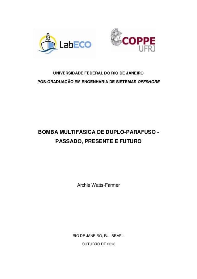 UNIVERSIDADE FEDERAL DO RIO DE JANEIRO PÓS-GRADUAÇÃO EM ENGENHARIA DE SISTEMAS OFFSHORE BOMBA MULTIFÁSICA DE DUPLO-PARAFUS...