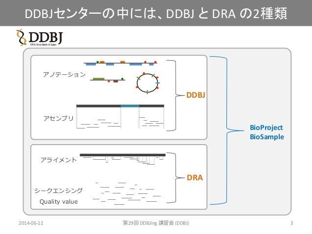 [DDBJing29]DDBJ Sequence Read Archive (DRA) の紹介 Slide 3