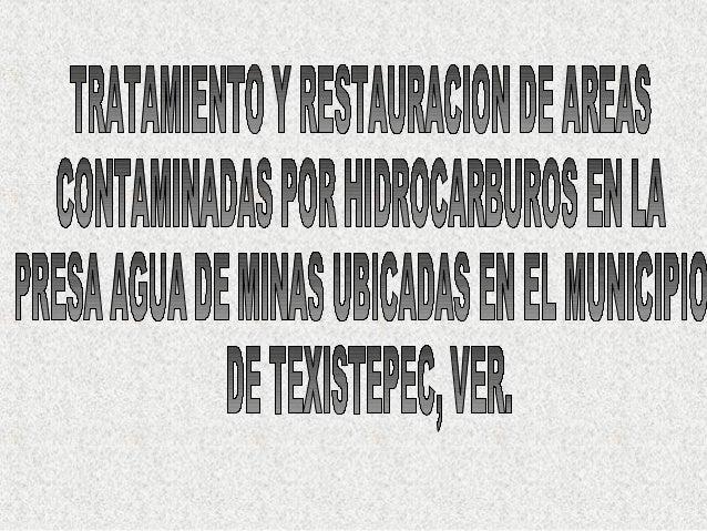 Biólogo Juan Ávila de Pemex en Texistepec, Vera Cruz,Mexico constatando el resultado del proceso de fluidización en un 100...