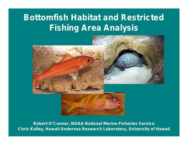Bottomfish Habitat and Restricted        Fishing Area Analysis            Robert O'Conner, NOAA National Marine Fisheries ...