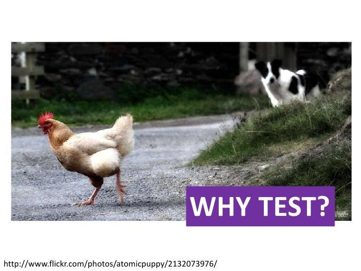 WHY TEST?<br />http://www.flickr.com/photos/atomicpuppy/2132073976/<br />