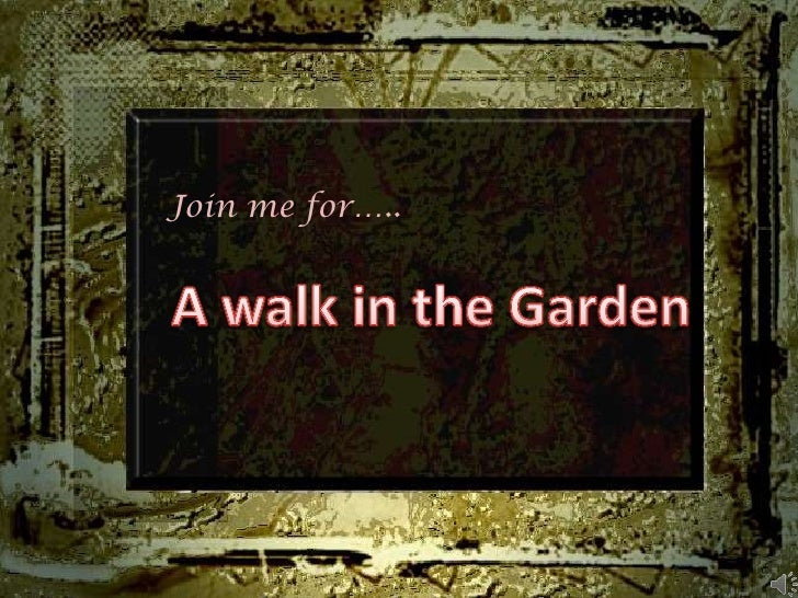 Join me for…..<br />A walk in the Garden<br />