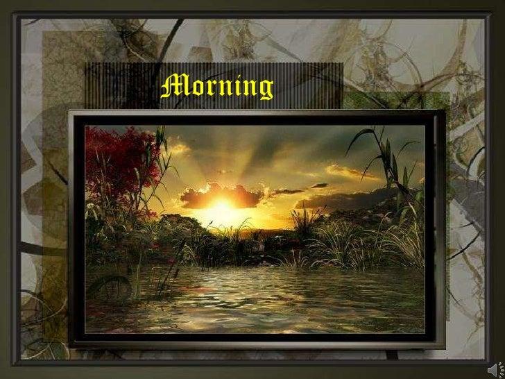 Morning<br />